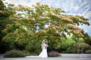 2-marin-county-wedding-photography-c29.jpg