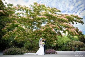 2-marin-county-wedding-photography-c29.jpg