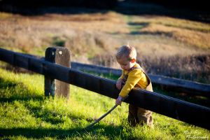best marin county childrens photographer.jpg